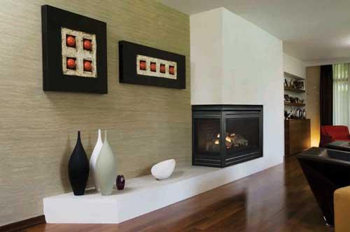 Photos:Hearth & Home Technologies