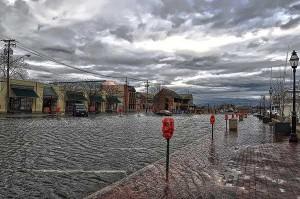 foter-flood