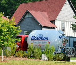 Photo from blossmangas.com.