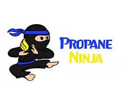 Logo: Propane Ninja