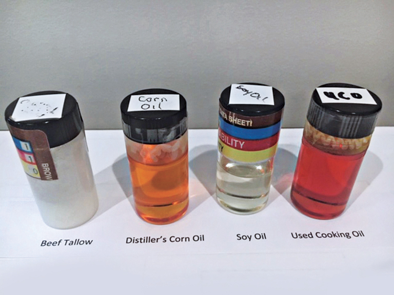 Beef tallow, distiller's corn oil, soy oil and used cooking oil can be used as feedstocks in the renewable propane production process. Photo courtesy of World Energy