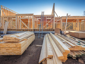 Moody's believes housing starts will rise by 19.4 percent in 2019, a sizeable jump from 2018. Photo: Istock.com/Maudib