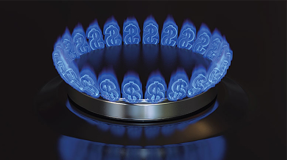 Growth is achieved organically by adding new propane users or through the addition of burner tips in and around the home. Photo: iStock.com/Model-la