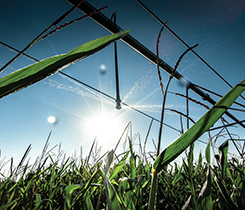 Farm irrigation photo
