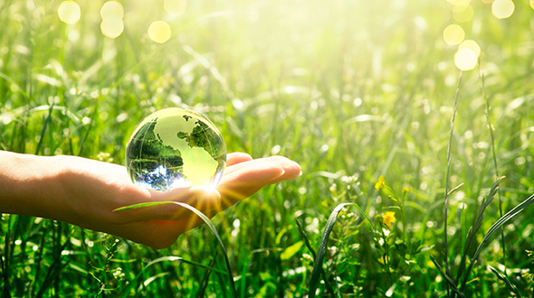 Green environment image