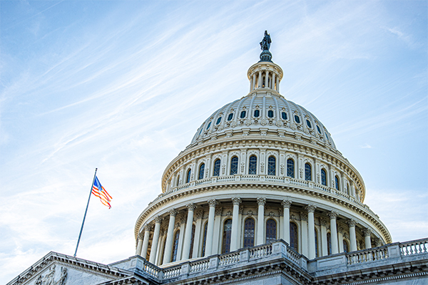 Capitol photo: Photo: Elisank79/iStock / Getty Images Plus/Getty Images